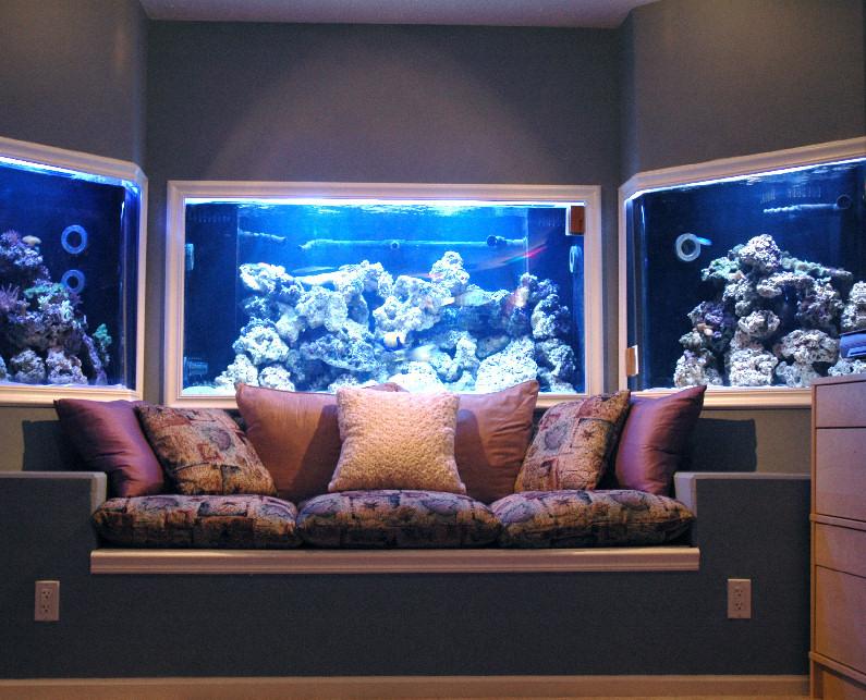 New York Glass Fish Tanks New Jersey Glass Fish Tanks