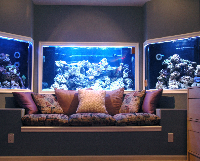 Bear glass custom glass fish tanks bear glass blog for Fish tank built into wall